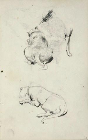 Stanisław KACZOR BATOWSKI (1866-1946), Studia leżącego psa