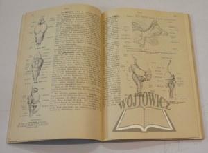 SELENKA Emil, Zoologisches Taschenbuch für Studierende.
