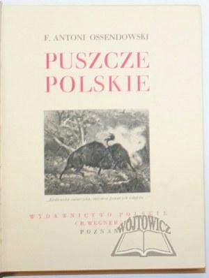 CUDA Polski. OSSENDOWSKI F. Antoni - Puszcze Polskie.
