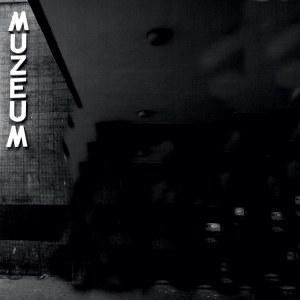 Marta Leśniakowska (ur. 1950), Muzeum nr 95, z cyklu: