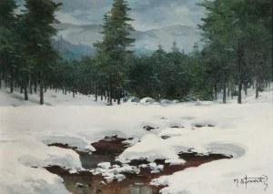 Michał STAŃKO (1901-1969), Strumień zimą