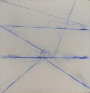 Włodzimierz Pawlak, Linia barwna XXXXX, 2006