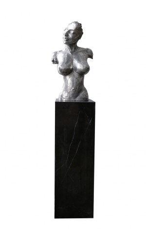 Dariusz Madejski, Srebrne popiersie
