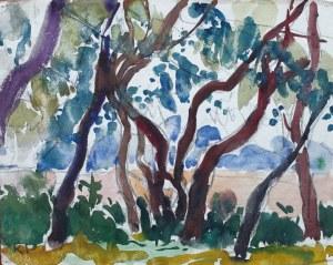 Kazimierz PODSADECKI (1904-1970), Pejzaż z drzewami, 1969