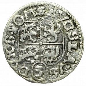 Pomorze, Księstwo Szczecińskie, Bogusław XIV, Grosz 1621, Darłowo