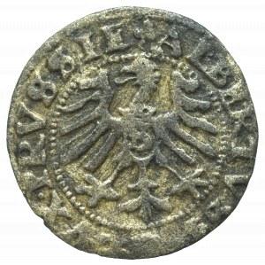 Germany, Preusen, Albrecht Hohenzollern, Schilling 1557, Konigsberg