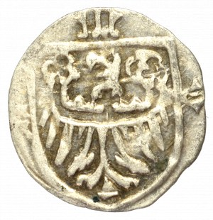 Śląsk, Halerz Oleśnica XV wiek