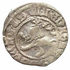Czechy, Władysław II Jagiellończyk, Fenig