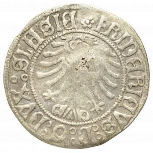 Śląsk, Księstwo Legnicko-Brzesko-Wołowskie, Fryderyk II, Grosz bez daty, Legnica