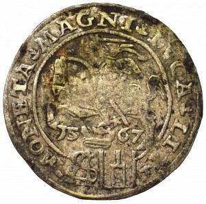 Sigismund II Augustus, Groschen 1567, Tiktin