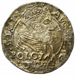 Sigismund II Augustus, Groschen for Poland 1566