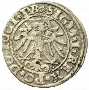 Sigismund I the Old, Groschen 1534, Elbing