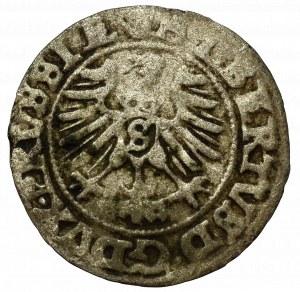 Germany, Preussen, Schilling 1559, Konigsberg