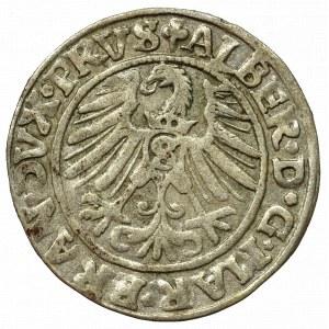 Prusy Książęce, Albreht Hohenzollern, Grosz 1546, Królewiec - mała data