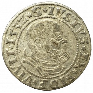 Prusy Książęce, Albrecht Hohenzollern, Grosz 1532, Królewiec