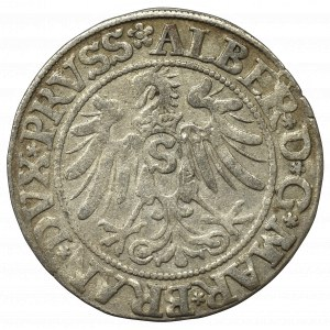 Prusy Książęce, Albrecht Hohenzollern, Grosz 1534, Królewiec