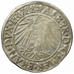 Prusy Książęce, Albrecht Hohenzollern, Grosz 1540, Królewiec