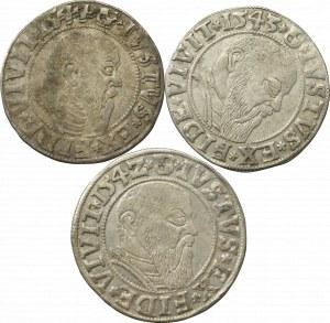 Germany, Preussen, Lot of groschen 1542-44