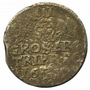 Zygmunt III Waza, Trojak anomalny 1601