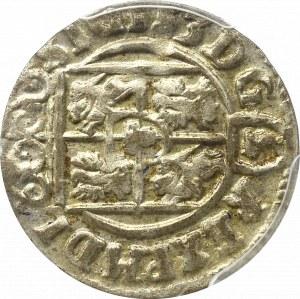 Zygmunt III Waza, Półtorak 1623, Bydgoszcz - PCGS MS62