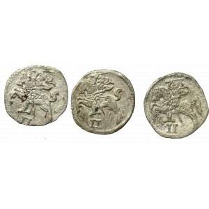Sigismund II Augustus, Lot of 2 denarii (3 ex)