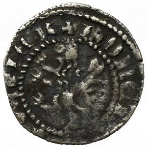 Casimirus III, 1/4 groshen Lviv