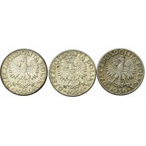II Rzeczpospolita, Zestaw 2 złote 1936 Żaglowiec (3 egz)