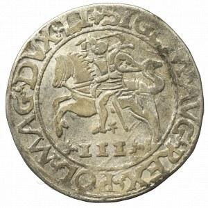Sigismund II Augustus, 3 groschen 1565, Tykocin