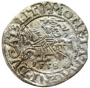 Sigismund II Augustus, Halfgroat 1558, Vilnius
