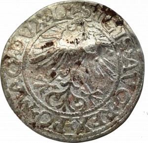Zygmunt II August, Półgrosz 1561, Wilno - LI/LITVA