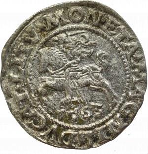 Zygmunt II August, Półgrosz 1563, Wilno - L/LITV