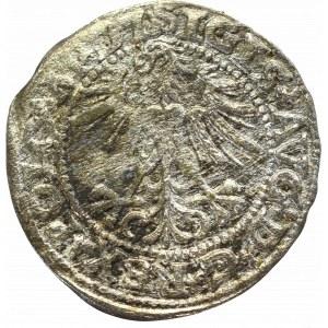 Sigismund II Augustus, Halfgroat 1563, Vilnius - L/LITV