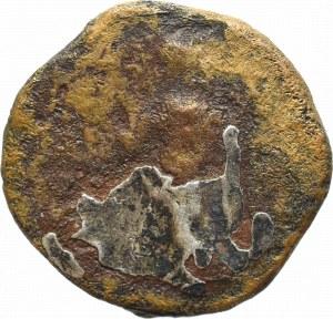 Cesarstwo Rzymskie, Septymiusz Sewer, Denar subaeratus