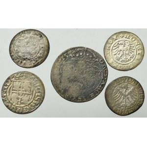 Zestaw monet Polski Królewskiej