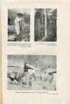LEPECKI Mieczysław Bohdan - Opis stanu Espirito Santo ze specjalnem uwzględnieniem terenów, na których odbywa się kolonizacja polska [1931]