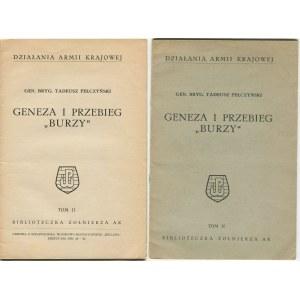 PEŁCZYŃSKI Tadeusz - Geneza i przebieg Burzy
