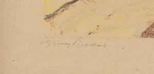 Wilno w autolitografiach barwnych Ignacego Pinkasa [1929]