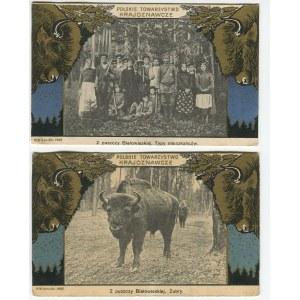 [Puszcza Białowieska] Zestaw 7 pocztówek [1908]