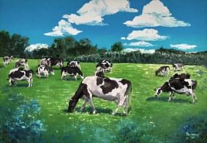 Pervin Ece Yakacik Leczycki (ur. 1991), 21 cows, 2020