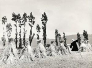 Henryk HERMANOWICZ (1912-1992) Zestaw 6 fotografii - Pejzaże