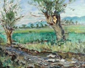 Stanisław PIZL (1896-1968), Pejzaż z wierzbami