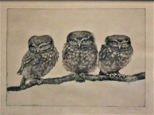Meta Pluckebaum(1876-1945),Trzy sowy
