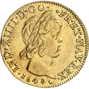 Louis XIV (1643-1715). Double louis à la mèche courte 1648, D, Lyon.