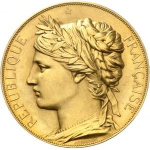 IIIe République (1870-1940). Médaille d'Or, Exposition universelle internationale par J. C. Chaplain, attribution au baron Thénard 1878, Paris.
