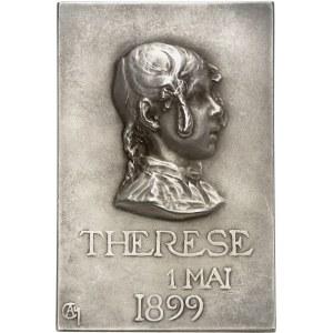 IIIe République (1870-1940). Médaille, Maternité ou Jeune mère allaitant son enfant par Alexandre Charpentier, SAMF n° 28 1899, Paris.
