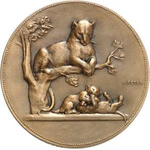 IIIe République (1870-1940). Médaille, Lion et Taureau, Panthère et ses petits par Victor Peter, SAMF n° 126 1904, Paris.