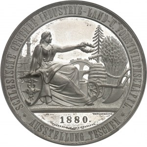 François-Joseph Ier (1848-1916). Médaille, Exposition agricole, industrielle et commerciale de Teschen (Cieszyn) par Wetzenmaier et Christlbauer 1880, Vienne.