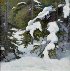 Stanisław STRASZKIEWICZ (1870-1925), Świerki zimą