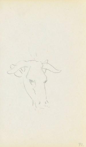 Jacek MALCZEWSKI (1854-1929), Zarys łba krowy
