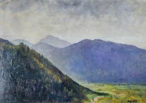 Irena WEISS – ANERI (1888-1981), Pejzaż górski